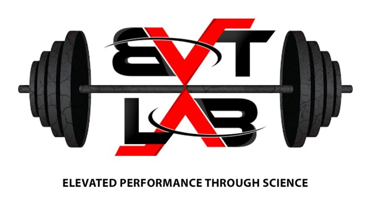 This is a logo for the BV Training Lab